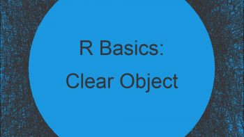 Clear Data Object from Workspace in R (3 Examples) | rm & remove Functions