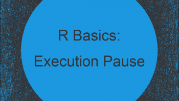 Execution Pause for X Seconds in R (Example)