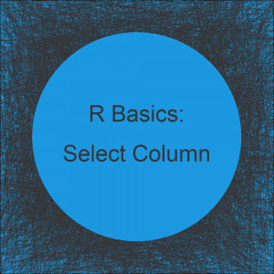 Select Data Frame Column Using Character Vector in R (Example)