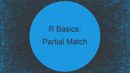 Select Rows with Partial String Match in R (2 Examples)