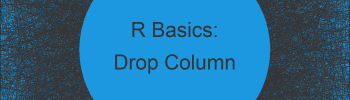 Remove Data Frame Columns by Name in R (6 Examples)