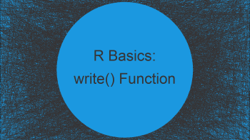 write Function in R (2 Examples)