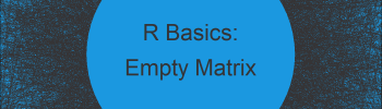 Create Empty Matrix in R (Example)