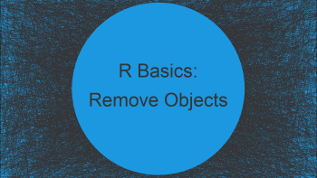 Remove All Objects But One from Workspace in R (Example)