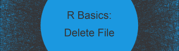 How to Delete a File Using R (Example)