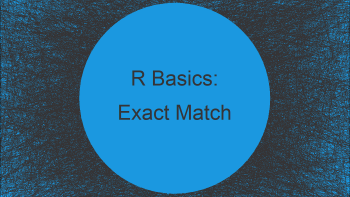 Find & Count Exact Matches in Character String Vector in R (3 Examples)