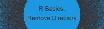 Remove Working Directory Using R (Example)
