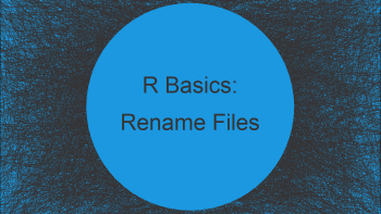 Rename Files Using R (Example)