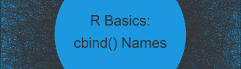 Set Column Names when Using cbind Function in R (2 Examples)