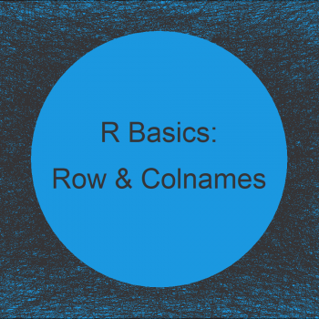 R Set Row & Column Names of Data with Unknown Dimension (Example)