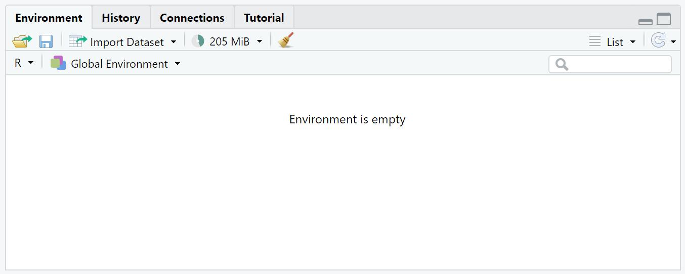 r environment 2