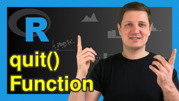 quit Function in R (2 Examples)
